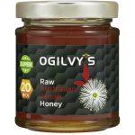 Spotlight September Raw Australian Jarrah Super Honey 20+ TA
